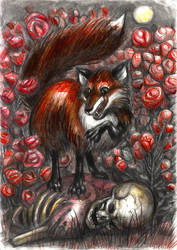 Fox by T-Nightingale