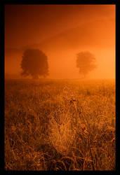 .spiderweb by orangebutt