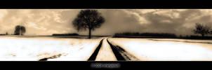 Dreams of Winterland by orangebutt