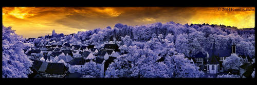 the village by orangebutt