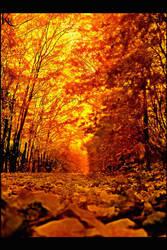 autumn days by orangebutt