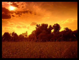 .summer by orangebutt