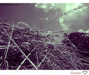Summer air by Tristis-soul