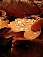 Apres la pluie. by Zwoing