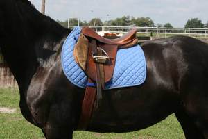 Tack Stock 10 by GloomWriter