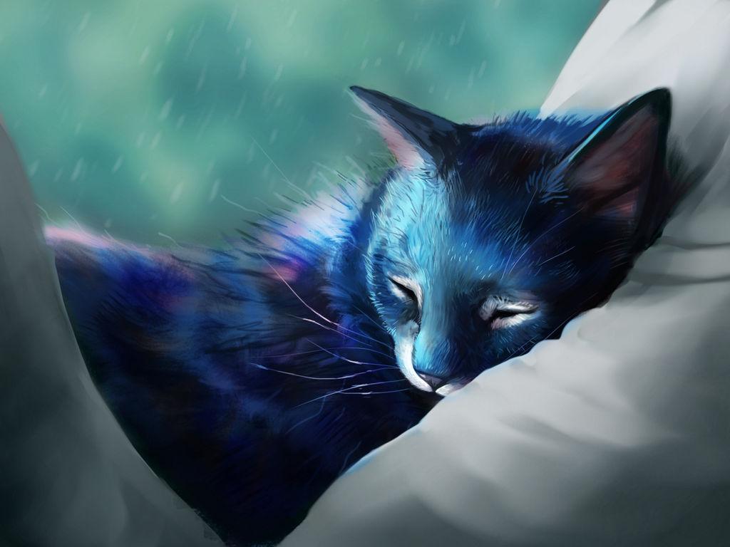 Nap by Noctualis