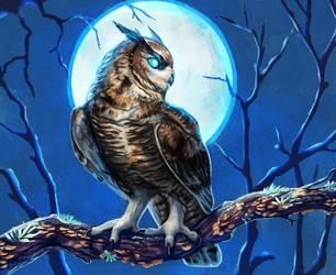 Drawtober 3 - night owl by Noctualis