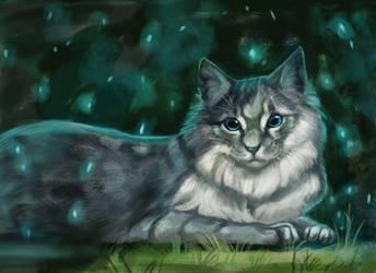Cat by Noctualis