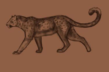 Jaguar Sketch by Noctualis