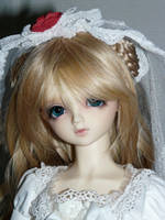 Volks SD Charlotte II by idrilkeps