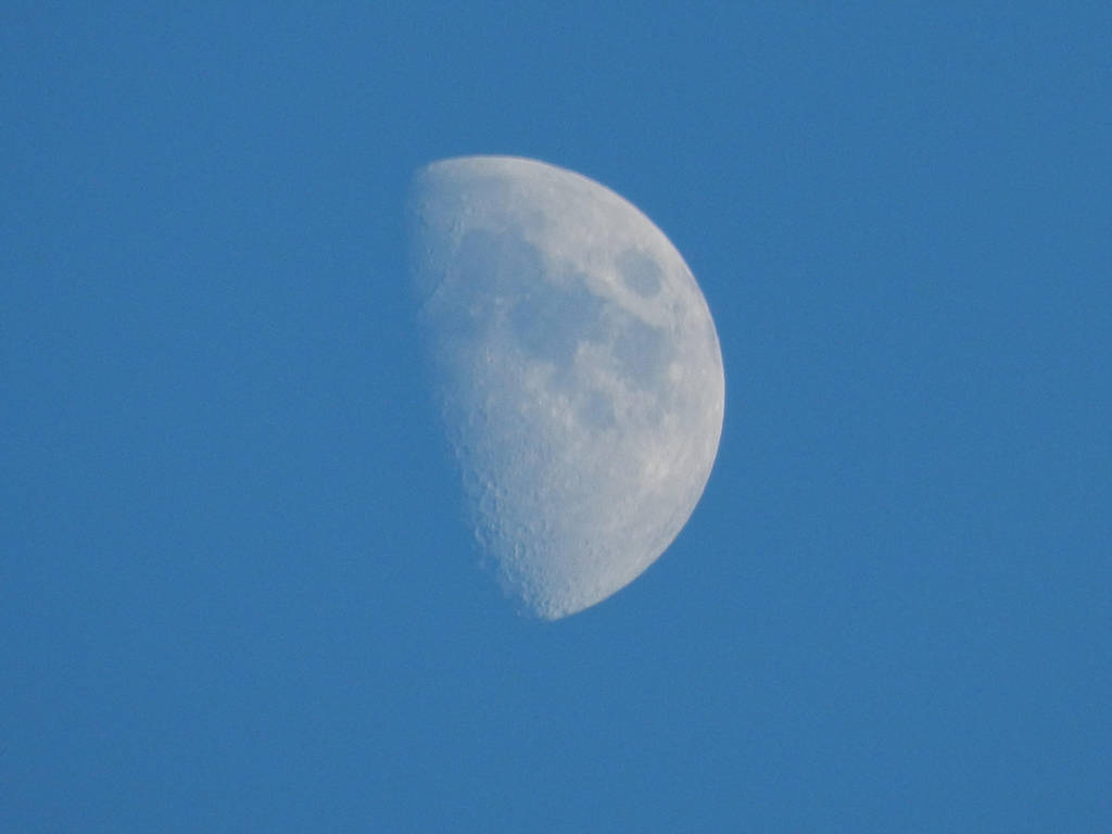 moon light by brisingr29