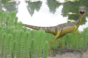 Compsognathus without feathers by paleopeter