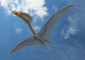 Hatzegopteryx thambema 5 by paleopeter