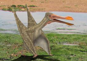 Ornithocheirus simus walk by paleopeter