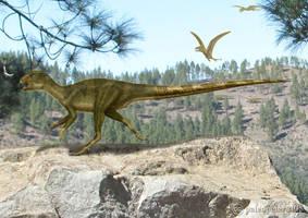 Heterodontosaurus by paleopeter