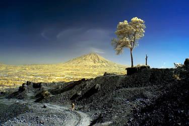 Barren by budiheran