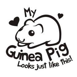 Guinea Pig MEME  blank by Kna