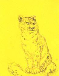 feline by Kna