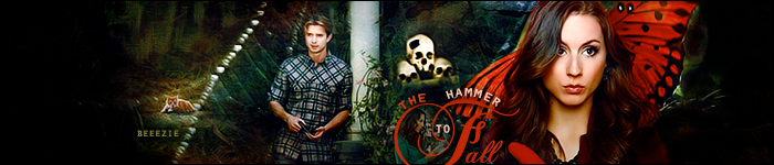The Hammer to Fall banner by AbhorsenBranwen