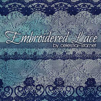 Embroidered Lace by illustratorcs6