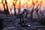 Sinon At Sunset by KuroTheFoxy