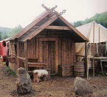 My viking home by Hrafenka