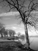 Shawnee Lake by racheldburton