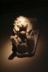 aslan by MrMamy