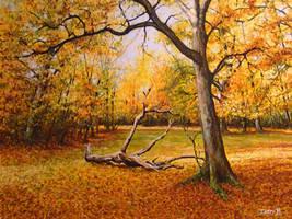 Golden Forest by DanBurgessTheArtist
