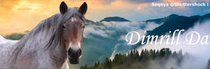 Dimrill Dale by DimrillDale-236344