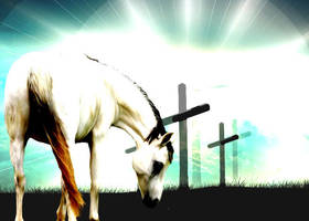 At The Cross by DimrillDale-236344
