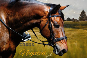 Chaos Negated by DimrillDale-236344
