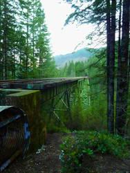 Vance Creek Viaduct by TravisKeaton