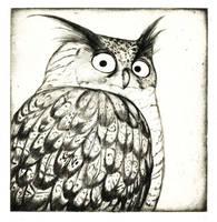eagle owl etching by Nenu