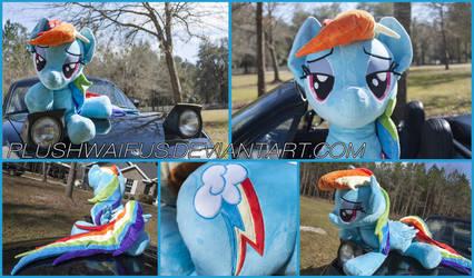 36 inch Life Size Rainbow Dash by PlushWaifus