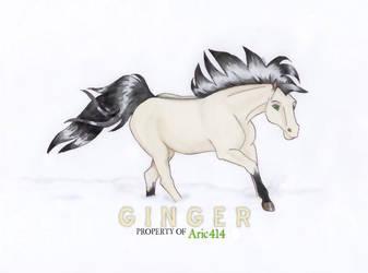 Ginger Sweet by soaraspirit