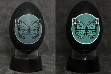 Carved Emu egg - Butterfly night light by eggdoodler