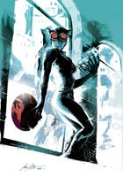Catwoman by rafaelalbuquerqueart