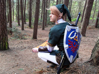 Link Cosplay: Map Reading by Jack-0f-Diam0ndz