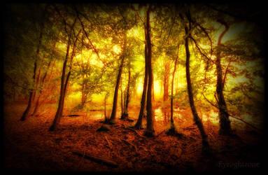 ... swampland ... by EYELIGHTZONE
