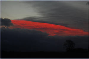 Red Stripe by graemeskinner