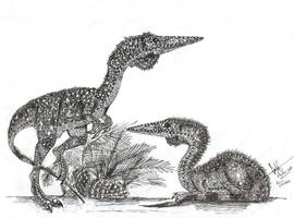 Compsognathus pair by Hueycuetzpalin