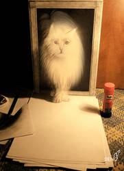 kedi by deniz-dsgn