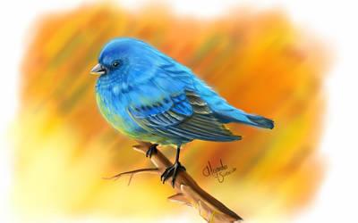 Sketch A Bird by suescun84