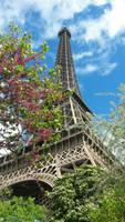 paris by stephaniedraw