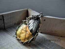 Golden forest eye - Labradorite, Silver and Gold by nurrgula
