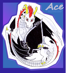 Ace the Dragon by firagare