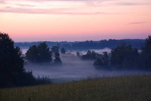 Solstice fog by puu4ux