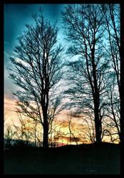 November Sun by PoisonAlice