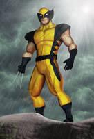 Wolverine by diegoliv